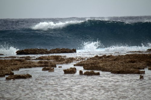 surf on the reef
