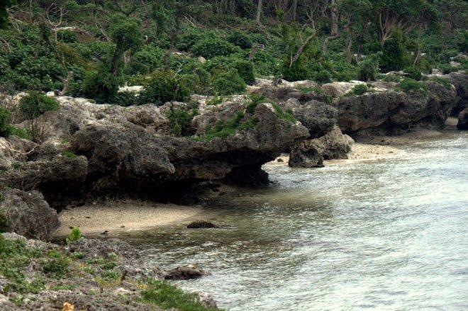 Tongan coast