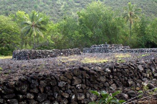 heiau at Kealakekua Bay